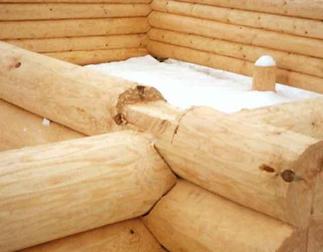 Costruire una dimora page 2 forum for Costruire una semplice capanna di legno